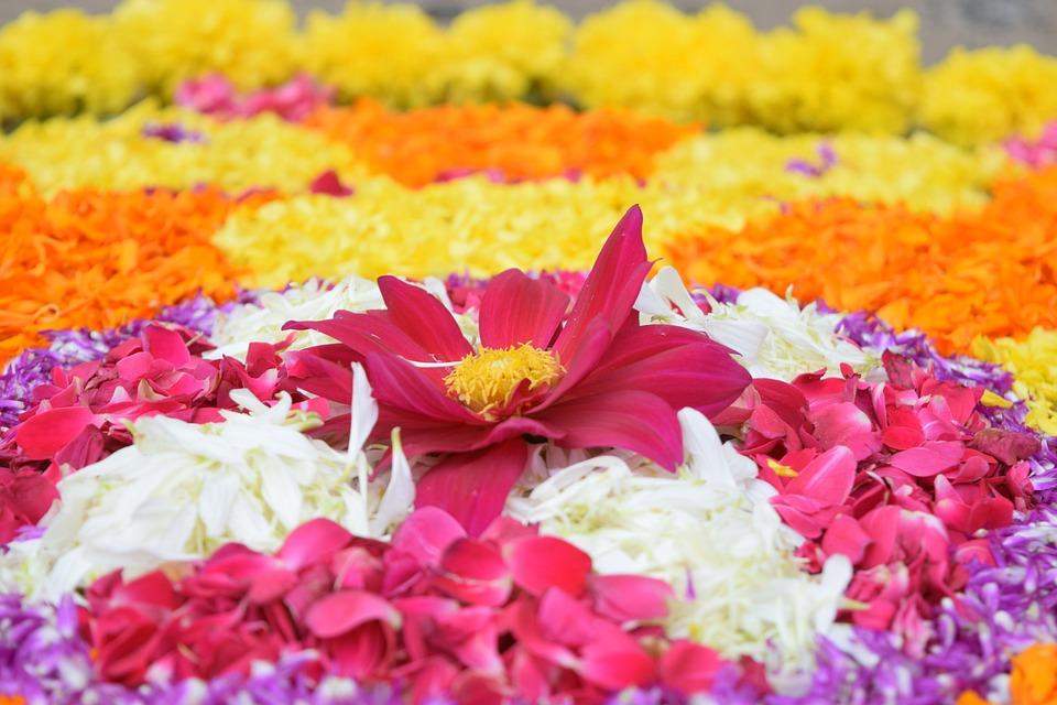 Onam Festival - Pulakam