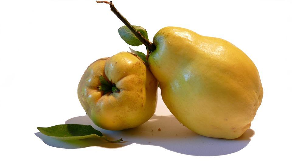 Coing, Poire-Coing, Fruit, Fruits À Pépins, Santé