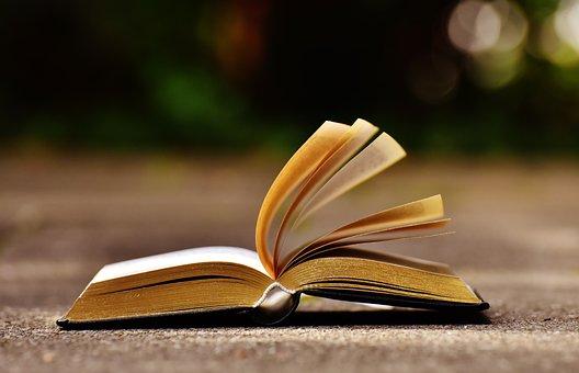 Libro, Acamparon, Páginas Del Libro