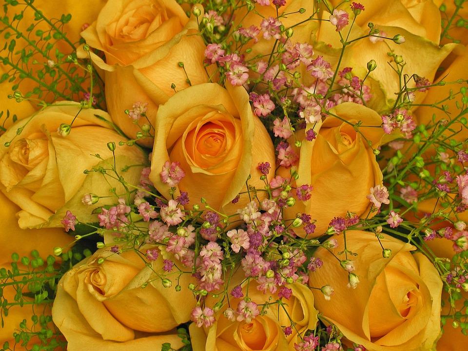Mazzo Auguri Di Compleanno Rose Foto Gratis Su Pixabay