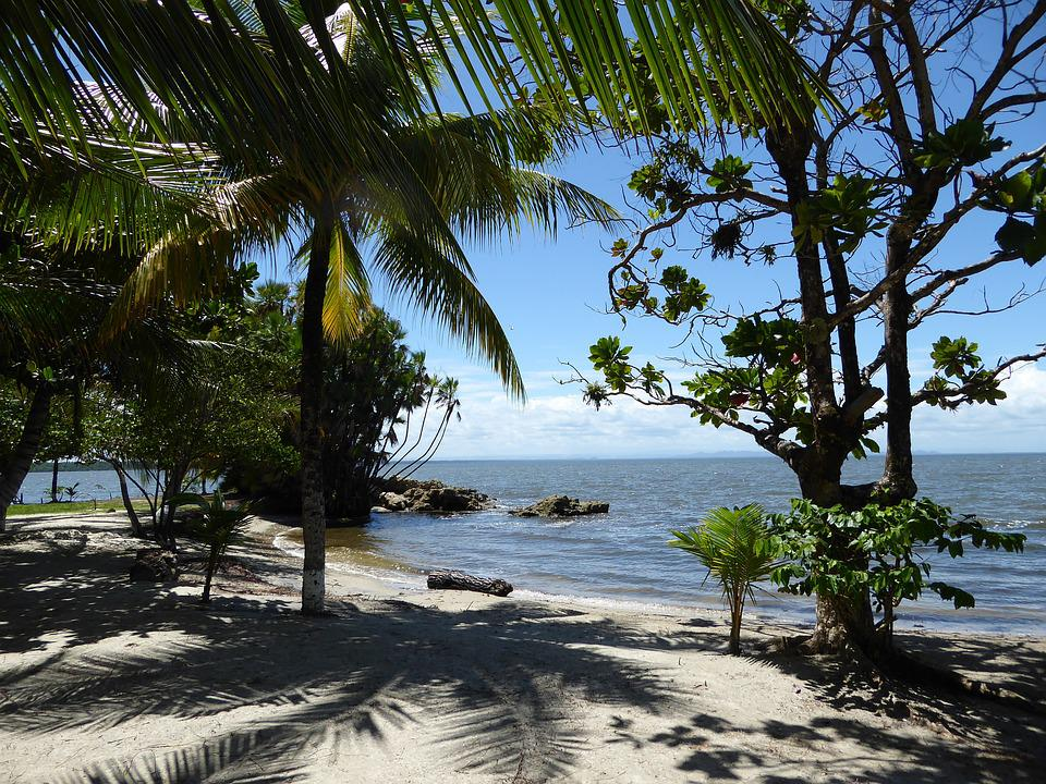 Beach, Karaiby, Gwatemala, Morza, Dłonie