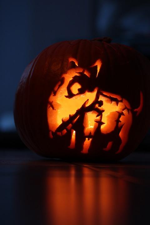 Pompoen Halloween.Pompoen Halloween Frankenweenie Gratis Foto Op Pixabay