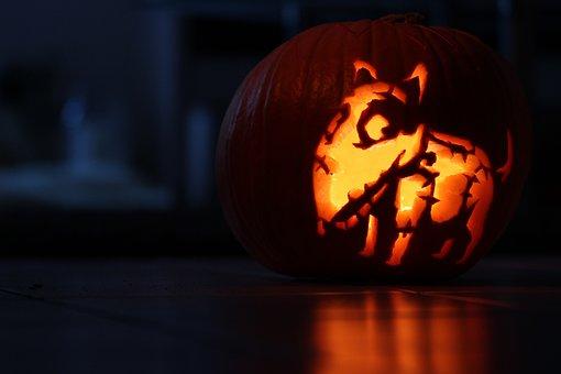 pumpkin-1743367__340.jpg