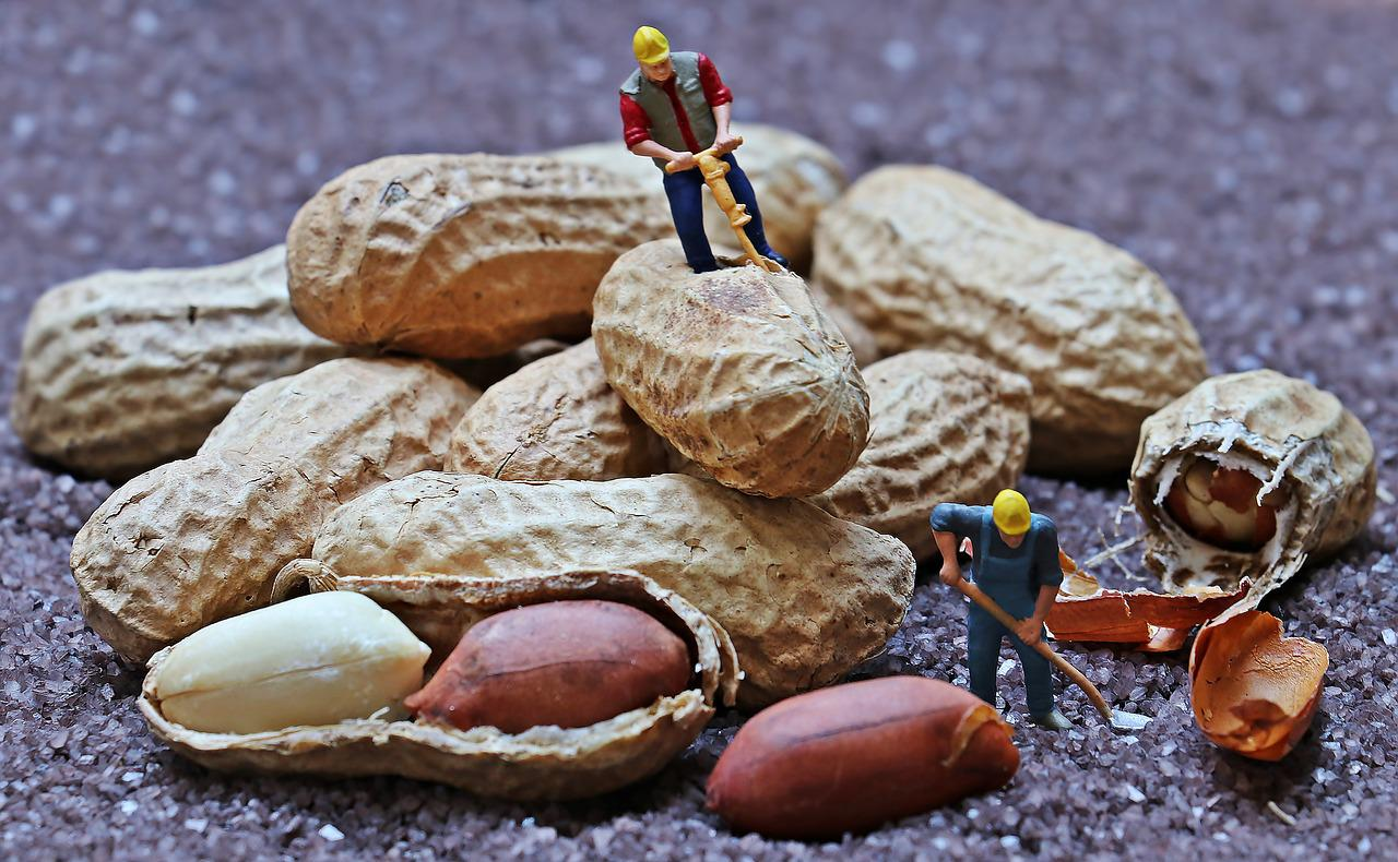 is peanut beneficial for health