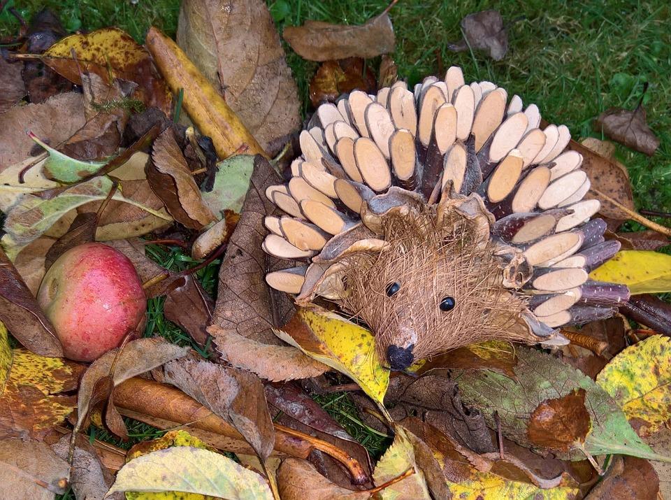 Fabulous Herbst Laub Igel - Kostenloses Foto auf Pixabay UT79