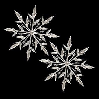 氷の結晶, 氷, フォーム, 霜, ファブリック, グリッド, ガラス