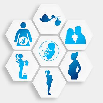 Schwangerschaft Bilder Pixabay Kostenlose Bilder Herunterladen