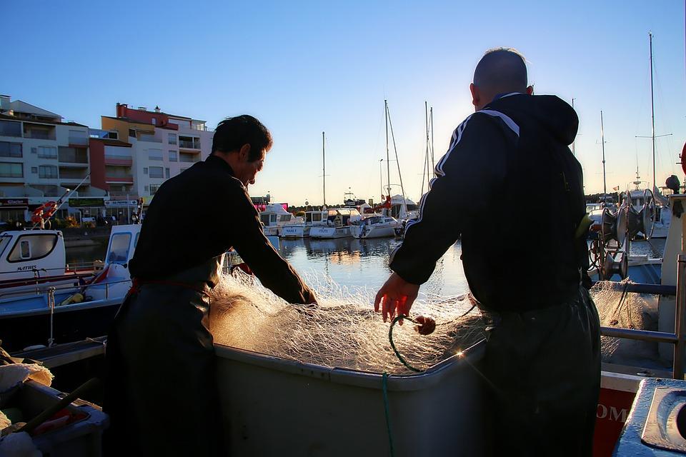 Fishing, Sea, Traditional Fishing, Net, Marin