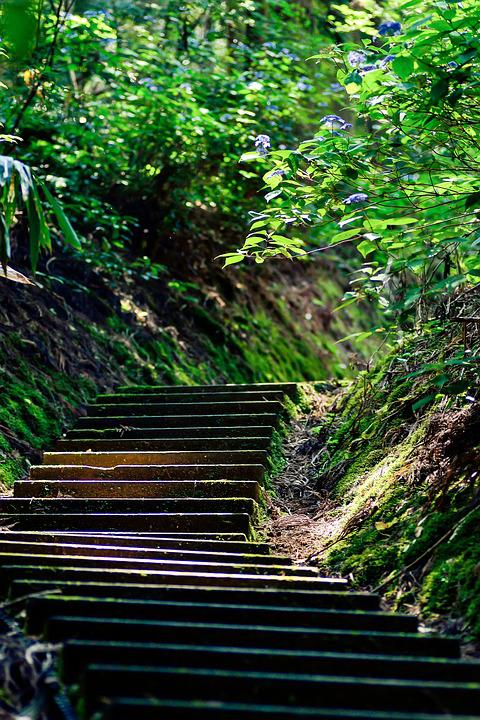 Japan Stairs Green  U00b7 Free Photo On Pixabay