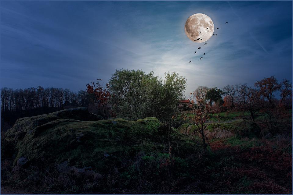 Kostenloses Foto: Landschaften, Mond, Nacht, Vollmond