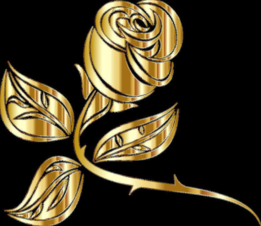 Imagem Vetorial Gratis Rose Flor Floral Espinhos