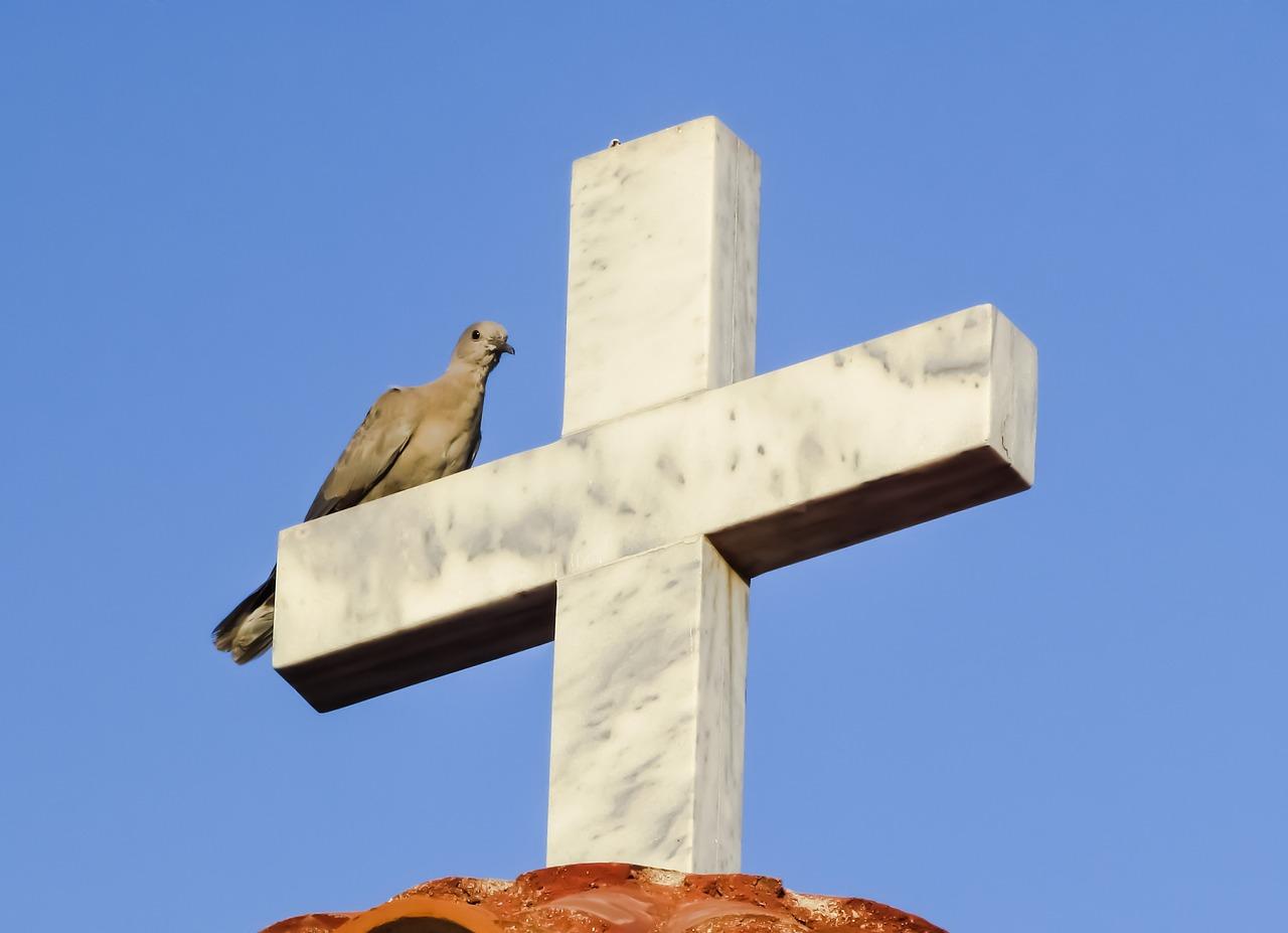 картинка голубь на кресте роллы