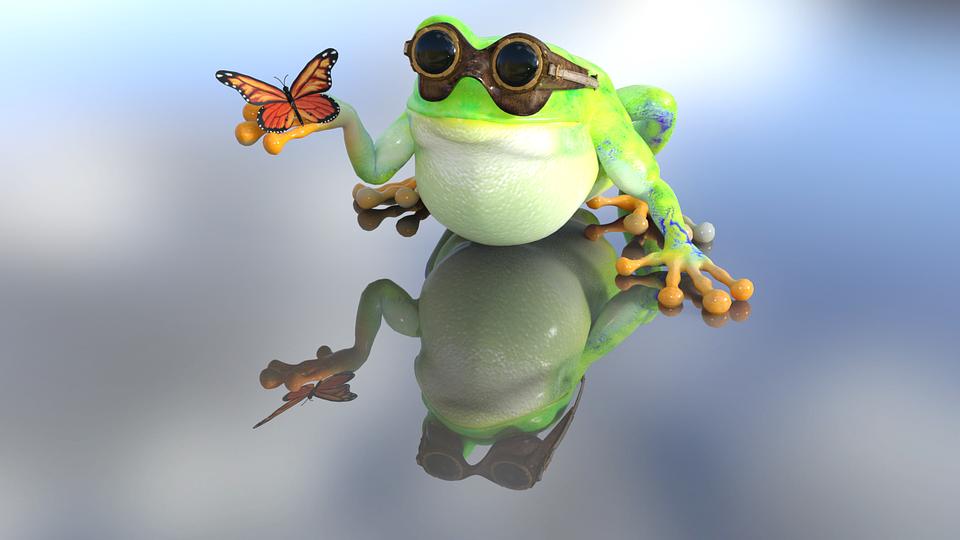 カエル, ヒキガエル, 自然, 蝶