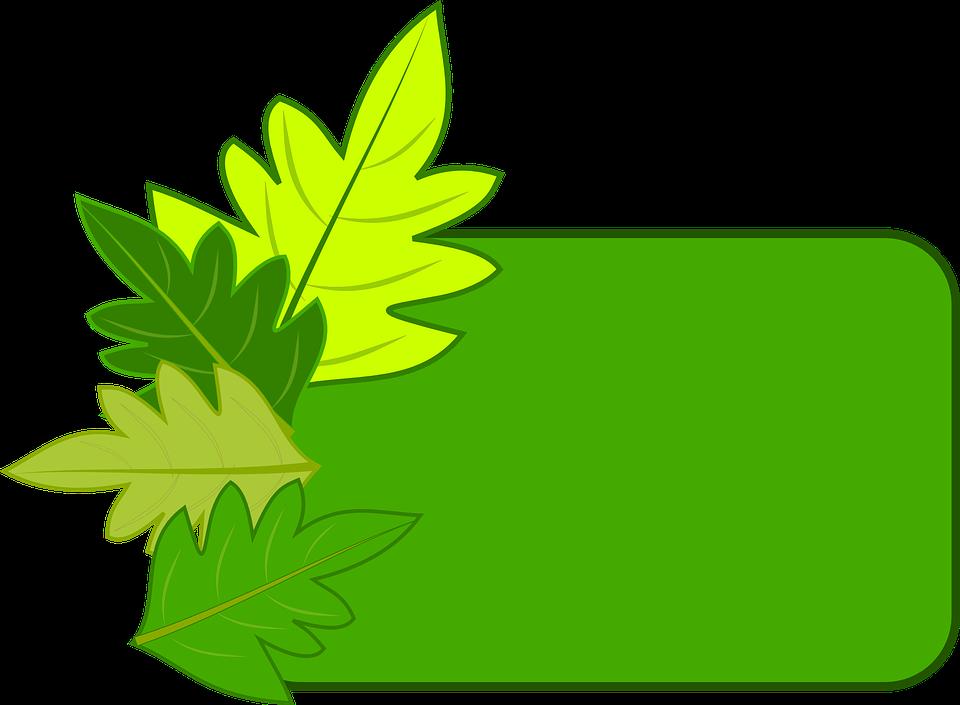 Marco Hojas Naturaleza · Imagen gratis en Pixabay