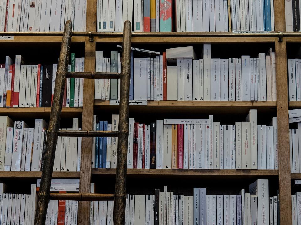 Bookshop, Library, Books, Ladder, Education, Shelving