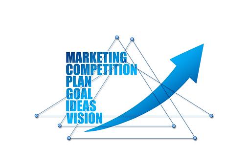 网络, 卷筒纸, 连接, 主意, 能力, 愿景, 目标, 市场营销, 计划