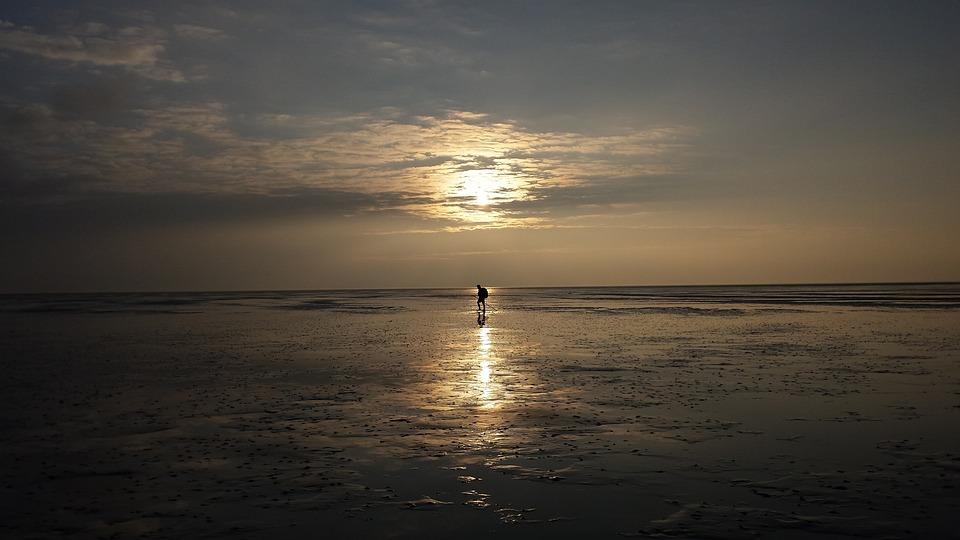 Wadlopen Holland Wadden Sea - Free photo on Pixabay