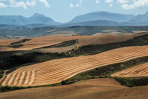 Landscape Wheat Fields Harvest Ploughed Mo