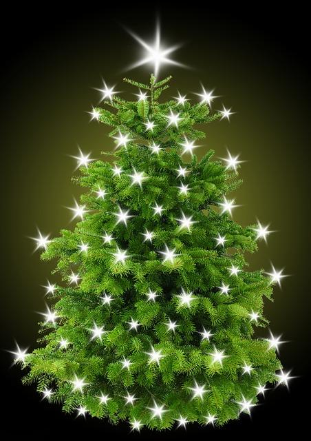 Kostenlose Illustration: Weihnachtsbaum, Tannenbaum ...