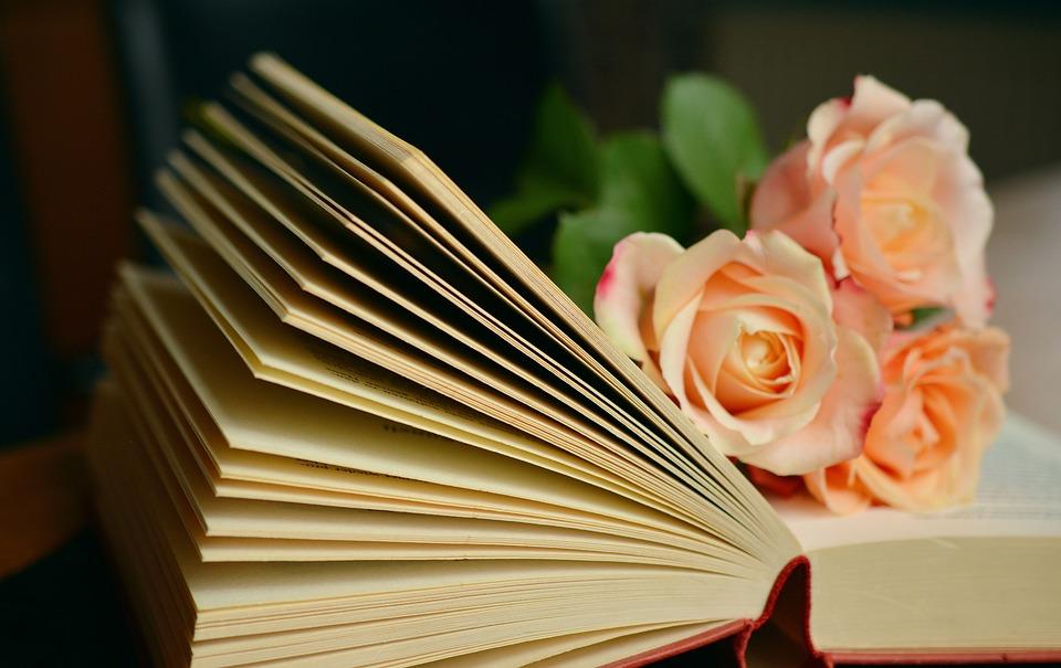 本, ページ, バラ, 花, オープン, 開いた本, 小説, 読み取り, 読書, レジャー, 本のページ