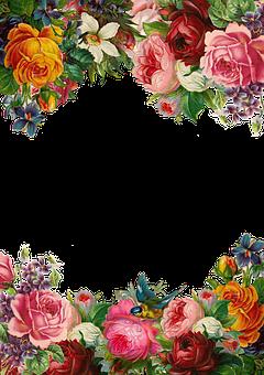 Flower Rose Frame Collection Vintage
