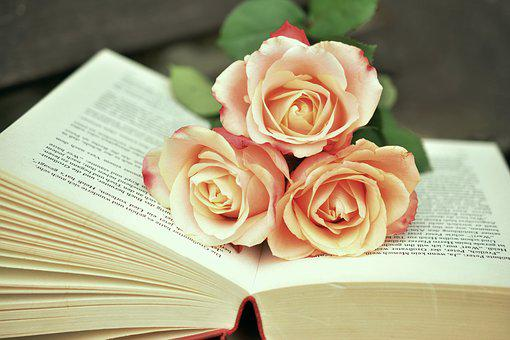 Book, Book Pages, Read, Roses, Romantic