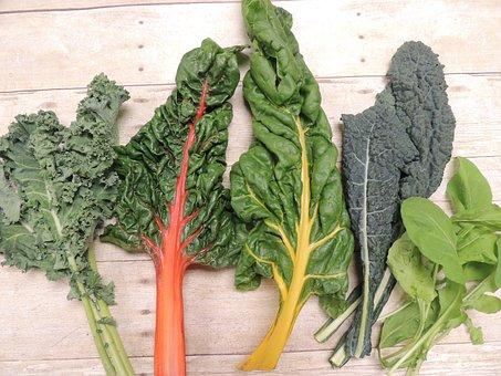 Kale, Swiss Chard, Arugula, Vegetable