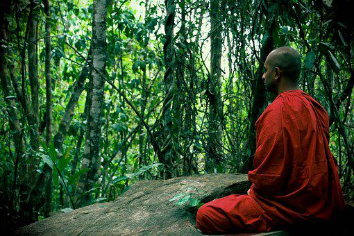 Meditation Bhikkhu Mahamevnawa Sri Lanka B