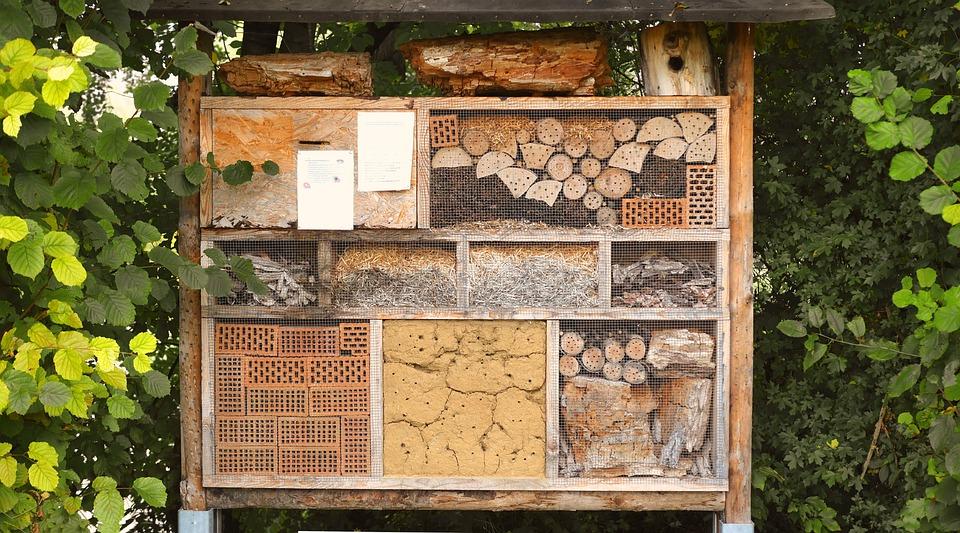 Photo gratuite maison d 39 insecte image gratuite sur pixabay 1778906 - Maison a insectes plan ...