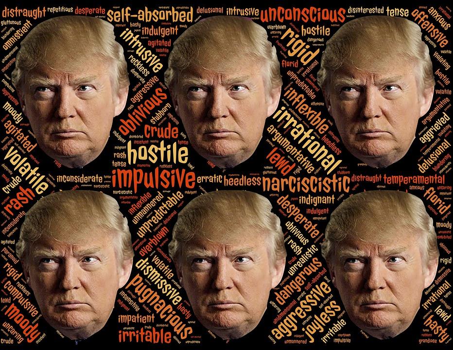 Trump, Trumpism, Candidat, Narcissique, Déranger