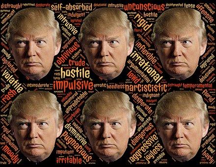 Trump, Trumpism, Candidate, Narcissist