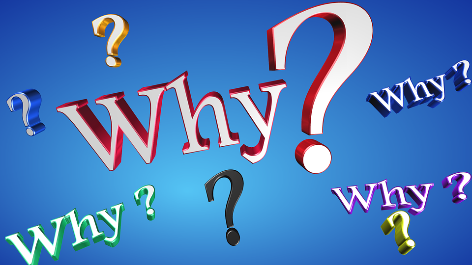 Why Text Question - Free image on Pixabay