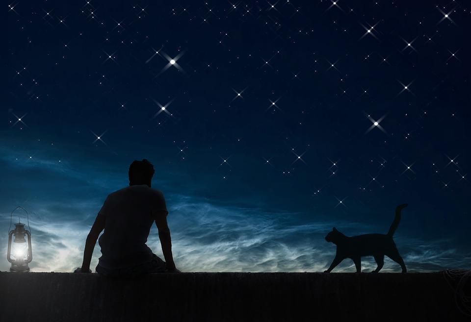 Звёздное небо-это не менее загадочный символ.