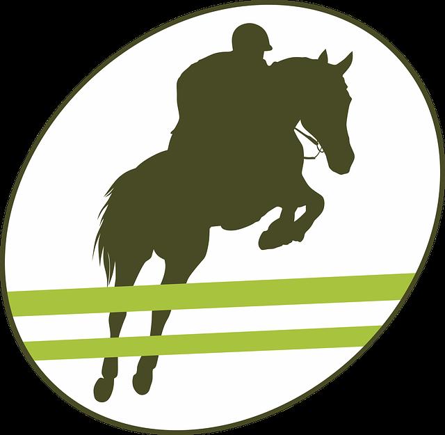 kostenlose vektorgrafik springen hindernis reiter pferd kostenloses bild auf pixabay 1785763. Black Bedroom Furniture Sets. Home Design Ideas
