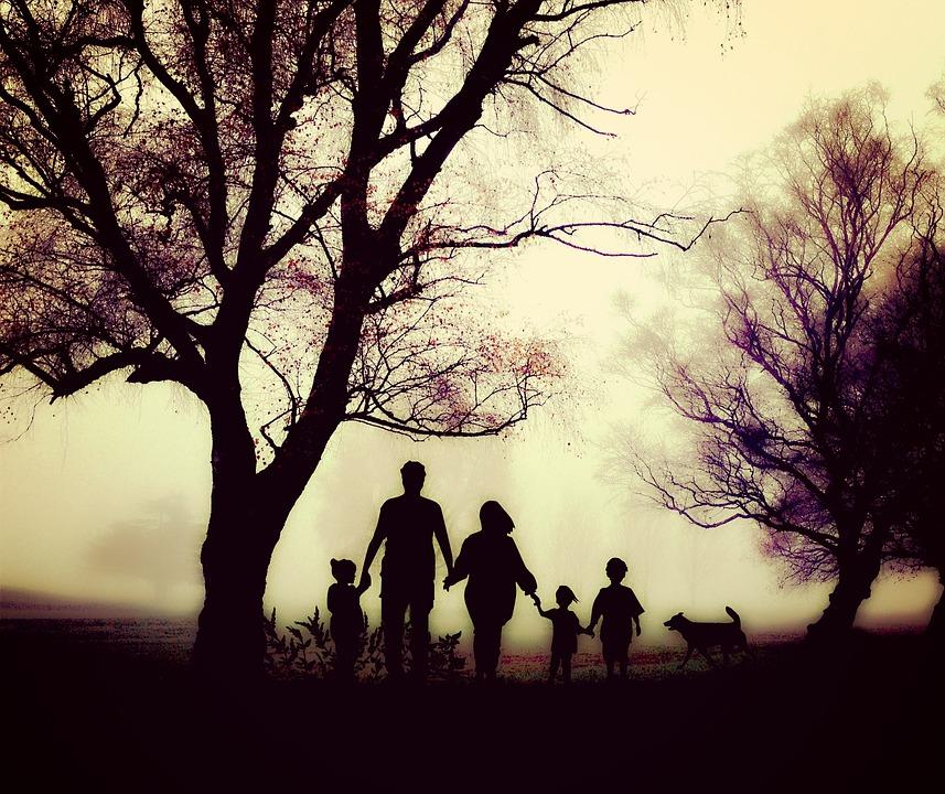 Family Walk Leisure Nature Hiking Children Human