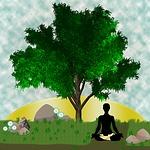 yoga, meditation, zen