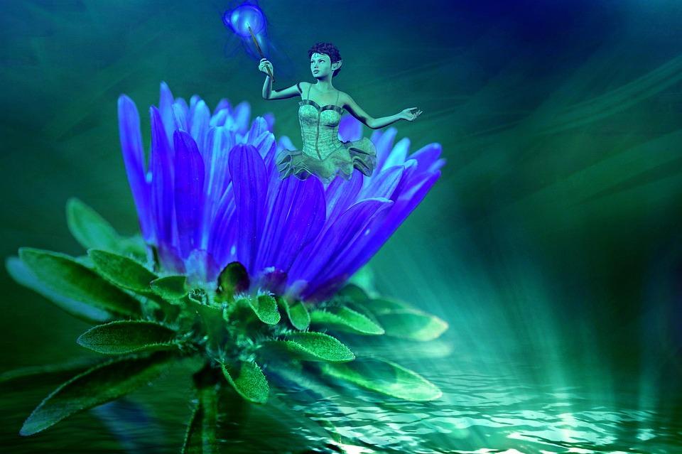 睡蓮の花言葉と由来・色別花言葉(白/青/紫/黄色)・怖い花言葉