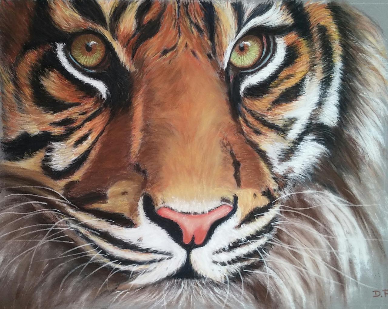 рисунки животные тигр здоровья, счастья всех