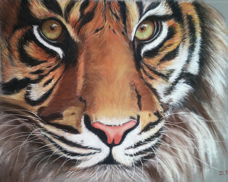illustration gratuite tigre pastel sec dessin art image gratuite sur pixabay 1788290. Black Bedroom Furniture Sets. Home Design Ideas