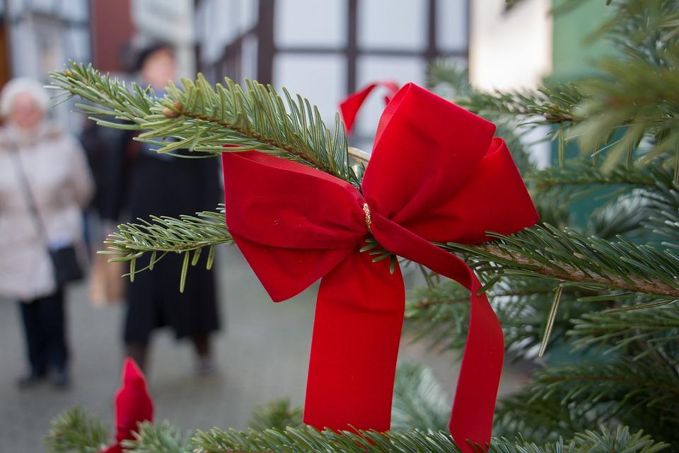 Schleifen Weihnachtsbaum.Schleife Weihnachtsbaum Tanne Kostenloses Foto Auf Pixabay