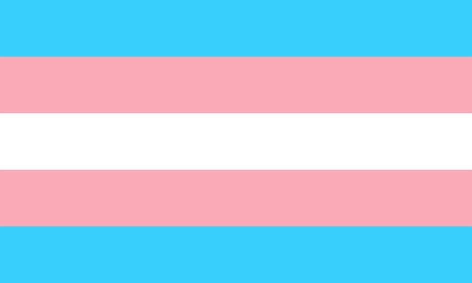 Trans, Transgender, Flag, Pride