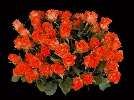 Bouquet Di Compleanno Immagini Pixabay Scarica Immagini Gratis