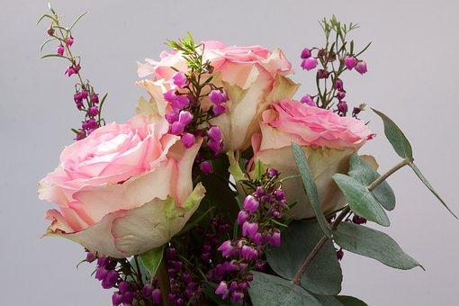 Bouquet, Ont Augmenté De, Erika, Macro