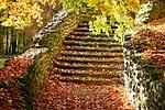 autumn, stairs