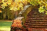 stairs, autumn