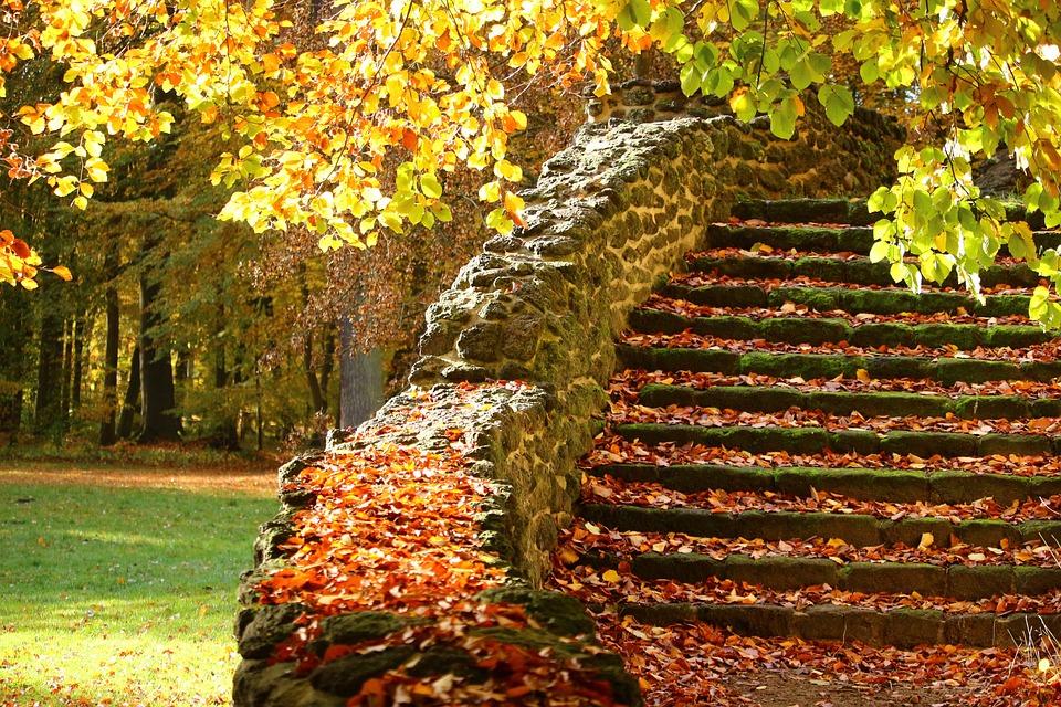 Escadas, Etapas De Pedra, Outono, Gradualmente, Stone