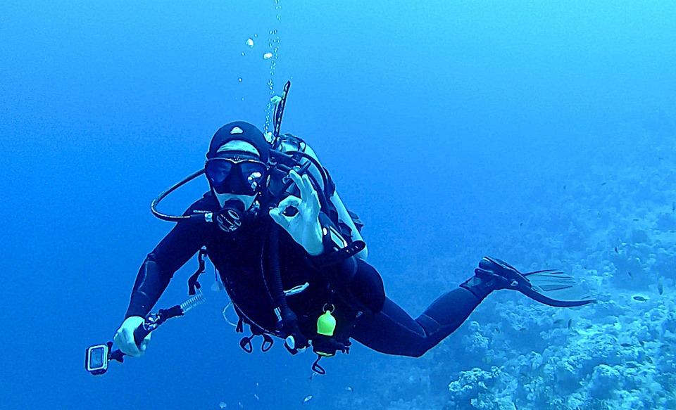 Resultado de imagen para diving