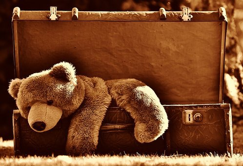 Luggage, Antique, Teddy, Sepia, Soft Toy