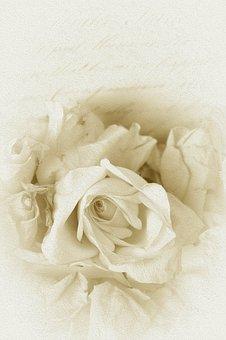 Wedding kostenlose bilder auf pixabay - Vintage bilder kostenlos ...