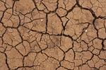 desert, dirt, dry